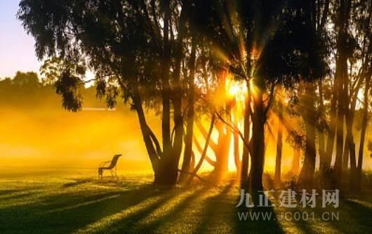 潮白河孔雀城中央公园|让心灵栖居,让梦想起飞