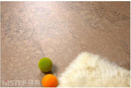得高进口木地板为什么环保健康又耐用?