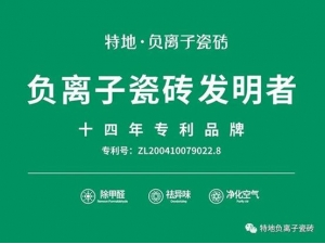 负离子瓷砖团体标准发布 为消费者保驾护航