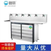 碧丽JO-6E饮用温开水200人商用不锈钢超滤一开五温节能饮