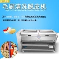 大型毛刷机,土豆清洗生产线专用,芋头生姜脱皮机