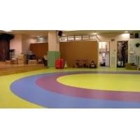 成都PVC地板 环保耐磨防滑成都运动PVC地板专业设计施工