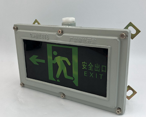BAYD81防爆安全指示灯