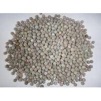 中揚建筑陶粒 足方足量 送貨上門
