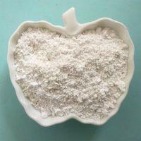 盛运销售填料硅藻土 污水处理硅藻土 功能性填料