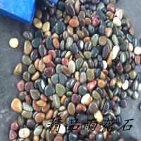 河北五彩石园艺盆栽石头 雨花石品种齐全