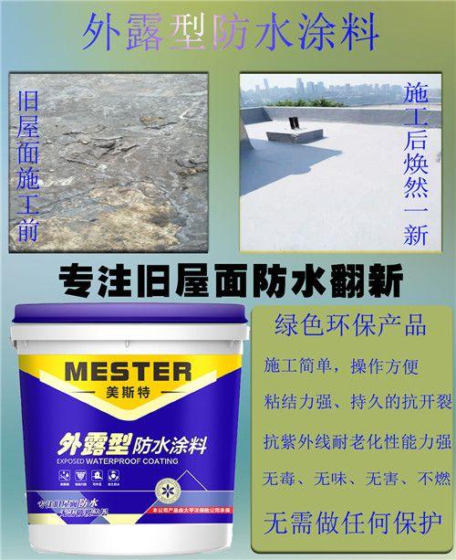 供应屋顶翻新外露型防水涂料厂家价格规格