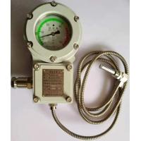 BWTY-205Z防爆测温仪表