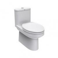 南京美标洁具-4/6升顶按节水型连体座厕CCAS1841