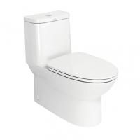 南京美标洁具- 新摩登4.8升节水性型连体座厕CCAS207