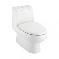 南京美标洁具-艾迪雅4/6升连体座厕CCAS2048