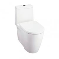 南京美标洁具-阿卡西亚3/6升连体座厕CCAS2067
