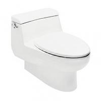 南京美标洁具-IDS自然风格6升连体座厕 CCAS2050