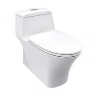 南京美标洁具-3/4.8升节水型连体座厕CCAS2009
