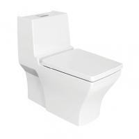 南京美标洁具-新典4.8升节水型连体座厕CCAS2060