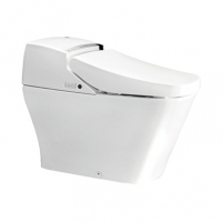 南京美标洁具 悠乐智能一体化座厕CCAS2010