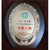 张玉强贡献人物奖