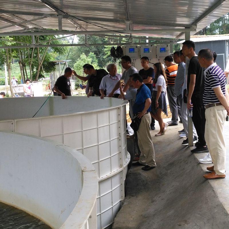 四川玻璃钢养鱼水池