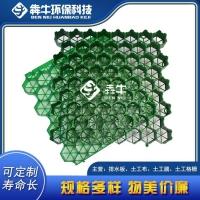 福建省加厚塑料植草格-廠家供應