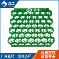 岳阳市小区车位绿化塑料植草格