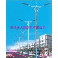 道路照明灯天津直销市政道路灯景观美化灯具