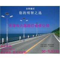 天津大昌路灯直供一体化太阳能路灯双头道路灯