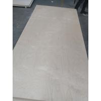 乐晨 桦木面多层板胶合板家具板 工艺板橱柜板