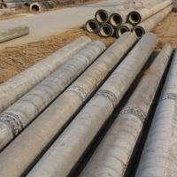 天津水泥电杆190-12米非预应力水泥电线杆供应
