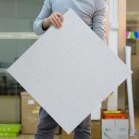 防靜電pvc地板 防靜電地板600*600 防靜電地板直鋪式