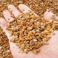 供应园艺洗米石  直销铺路洗米石  黑色洗米石