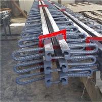 桥梁伸缩缝|路泽桥梁伸缩缝|D80伸缩缝供应