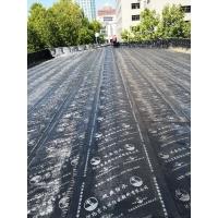 石家莊市政府第三會議室屋頂防水整修及其他防水項目維修現場
