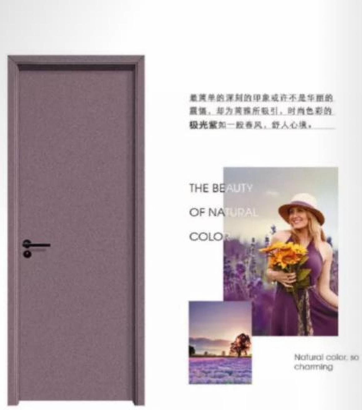 金属漆木门轻奢烤漆门就选广东红海豚木门厂