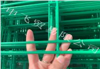 低碳钢双丝隔离网,篮球场隔离网,高速公路隔离网,小区护栏网