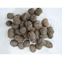 孔氏陶粒厂家专注生产