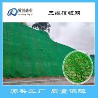 睿创峰业三维土工网垫植草护坡用三维植草网EM2三维植被网