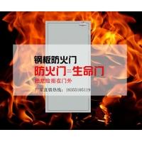 安徽变电站单扇超宽尺寸钢质防火门1224