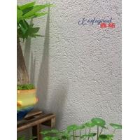 雅晶石藝術涂料質感漆廣東廠家直銷誠招代理