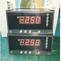 智能温度控制仪WP-C803-02-12-HH