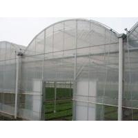 雨棚阳光板-菏泽雨棚PC采光板-温室大棚PC阳光板耐力板