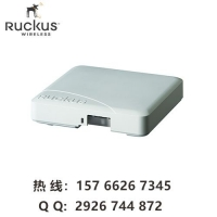 ruckus R500 优科901-R500-WW00