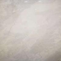 莱诺通体硅藻泥生态石LN837