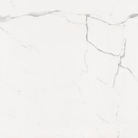 天盛陶陶瓷 金刚釉8D031