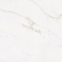 天盛陶陶瓷 金刚釉8P007
