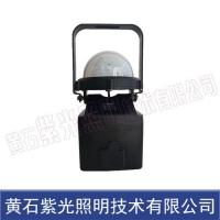 轻便式多功能装卸灯YJ2204|紫光照明YJ2204图片