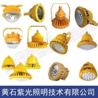 LED防爆灯GB8050_紫光照明GB8051工厂防爆灯图片
