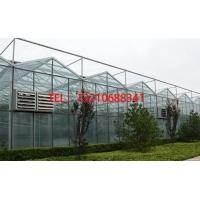玻璃温室大棚种植花卉