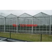 玻璃温室大棚造价单