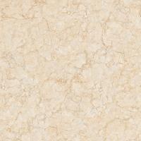 負離子通體大理石瓷磚室內地磚800*800FF8807
