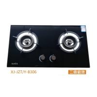 XJ-JZTY-B306